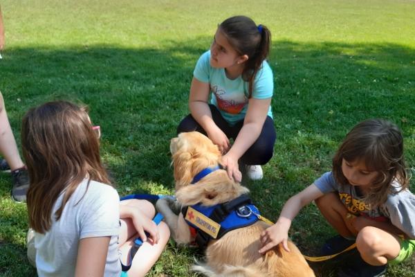 Učenje socialnih veščin s pomočjo psa