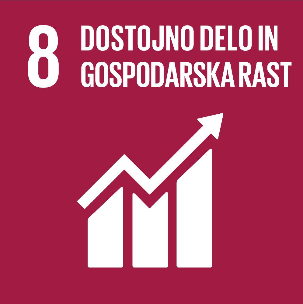 SDG 08